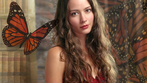 butterflies on the wall amy acker
